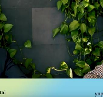 Видео интервью VIYM и Polynom Crypto Capital - развитие криптовалют и блокчейна
